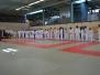 15 mai 2019 - Coupe technique Régionale de judo adapté